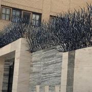 حفاظ شاخ گوزنی در دماوند